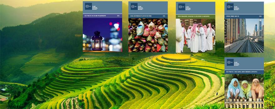 CSR-reports